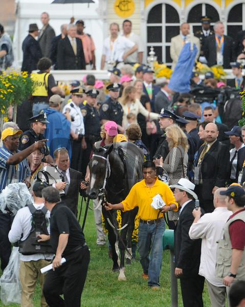 Rachel Alexandra wins the 2009 Preakness Stakes<br /> Skip Dickstein