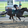 Royal Delta at Belmont Park 6/2/2013.<br /> Coglianese Photos