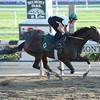 Royal Delta at Belmont Park 6/2/2013.<br /> Coglianese Photos
