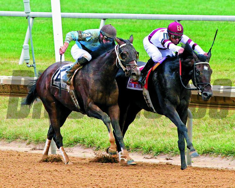 Royal Delta Tiz Miz Sue Delaware Handicap