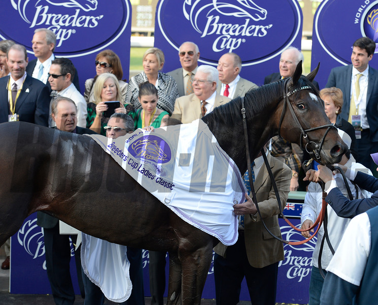 Caption: in winner circle: Royal Delta with Mike Smith wins the Ladies Classic. <br /> Breeders' Cup races at Santa Anita near Arcadia, California, on Nov. 2, 2012.<br /> BCRACES2012          Ladies Classic1    image396<br /> Photo by Anne M. Eberhardt