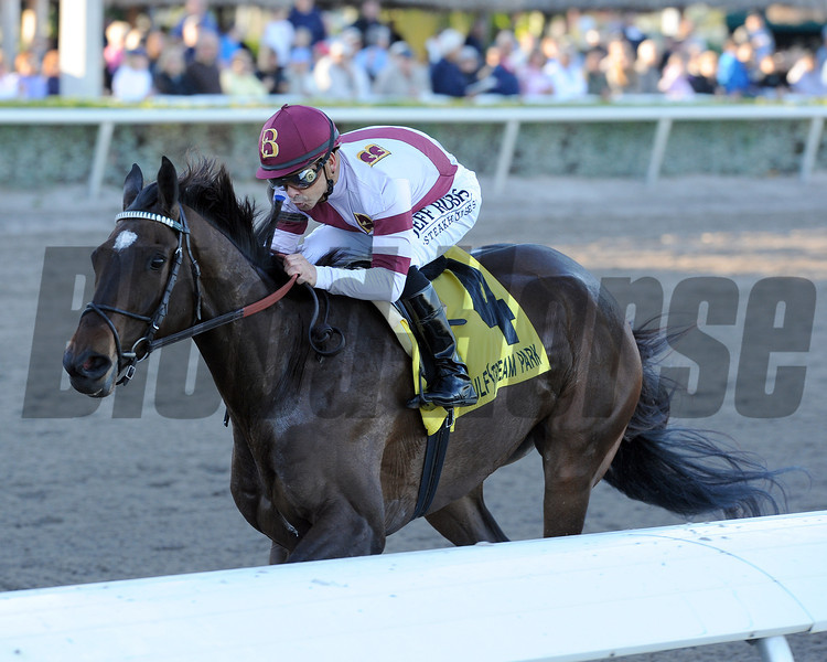 Royal Delta wins the Sabin Stakes.<br /> Photo by Coglianese Photos/Kenny Martin