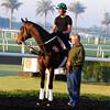 Royal Delta with Bill Mott<br /> Dubai, March 2013<br /> Dave Harmon Photo