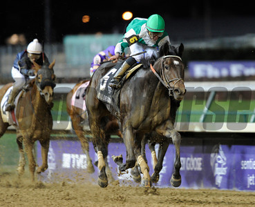Royal Delta with jockey Jose Lezcano up wins the Breeders' Cup Laddies Classic. Photo by Skip Dickstein