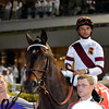 ROYAL DELTA COMING OUT FOR THE DUBAI WORLD CUP 2012