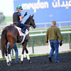 Royal Delta, March 27th, 2013, photo by Mathea Kelley, Dubai World Cup 2013,