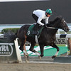 Royal Delta - Belmont Park Work, October 26, 2013.<br /> Coglianese Photos