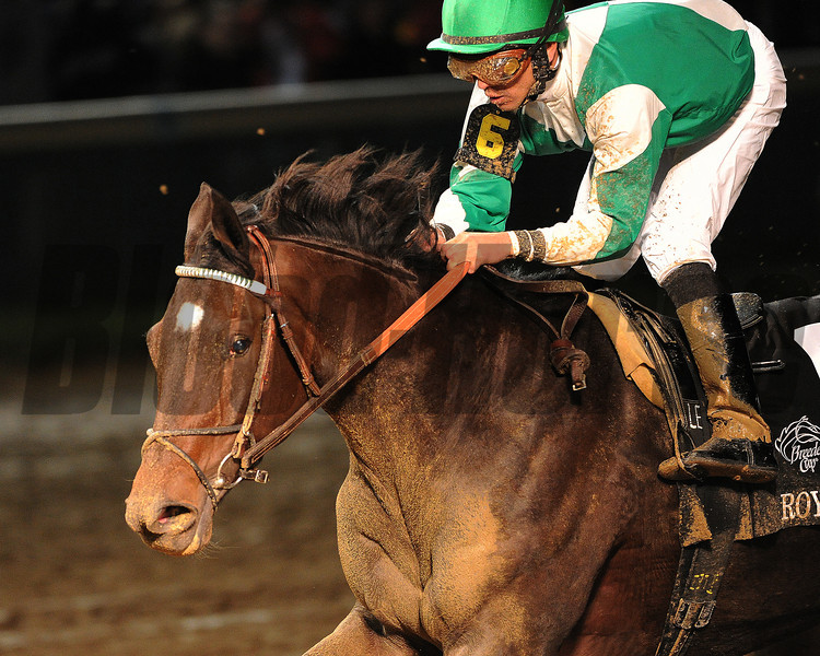 Royal Delta, Jose Lezcano up, wins the Breeders Cup Ladies Classic Churchill Downs , Lousiville, KY 11/4/11, photo by Mathea Kelley