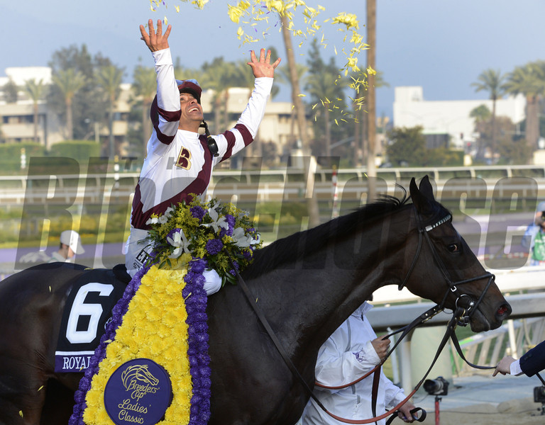 Royal Delta wins the Ladies Classic at Santa Anita Park in Arcadia, California November 2, 2012.  Photo by Skip Dickstein