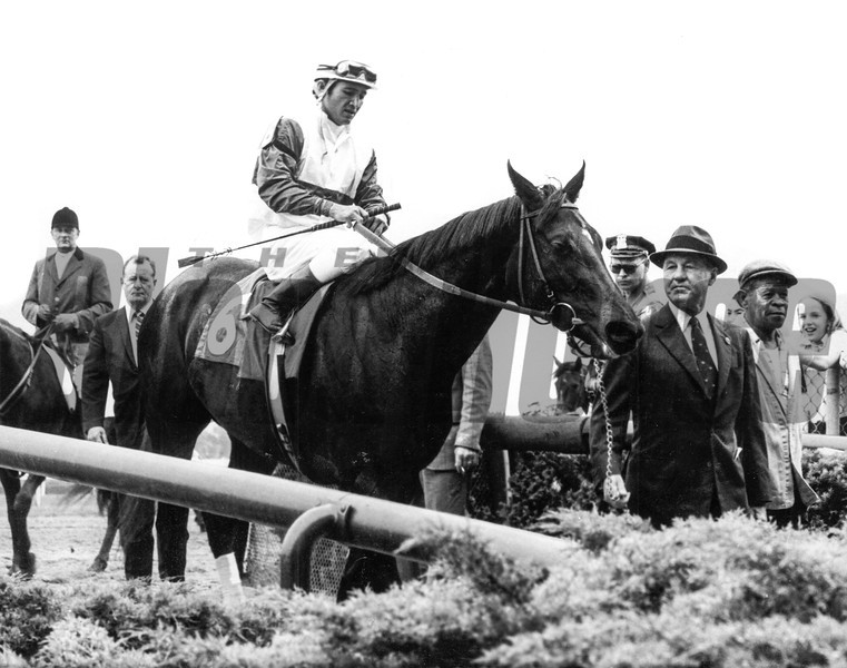 Ruffian<br /> Photo by: Bob Coglianese