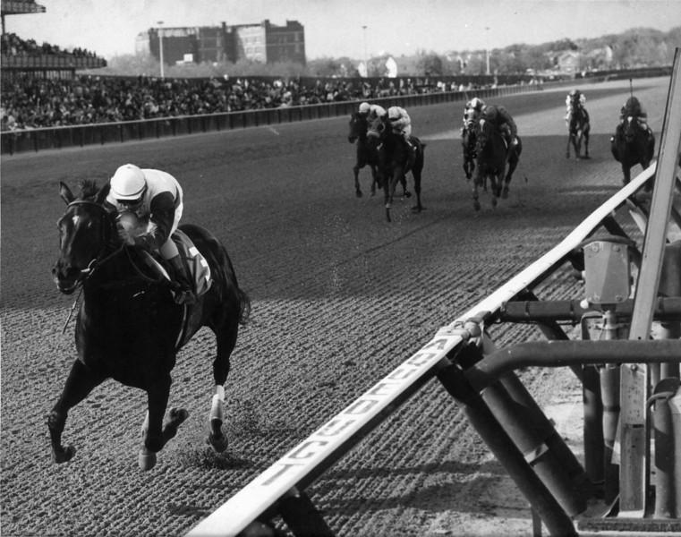 Ruffian wins the 1975 Acorn Stakes at Aqueduct.<br /> Photo by: Bob Coglianese