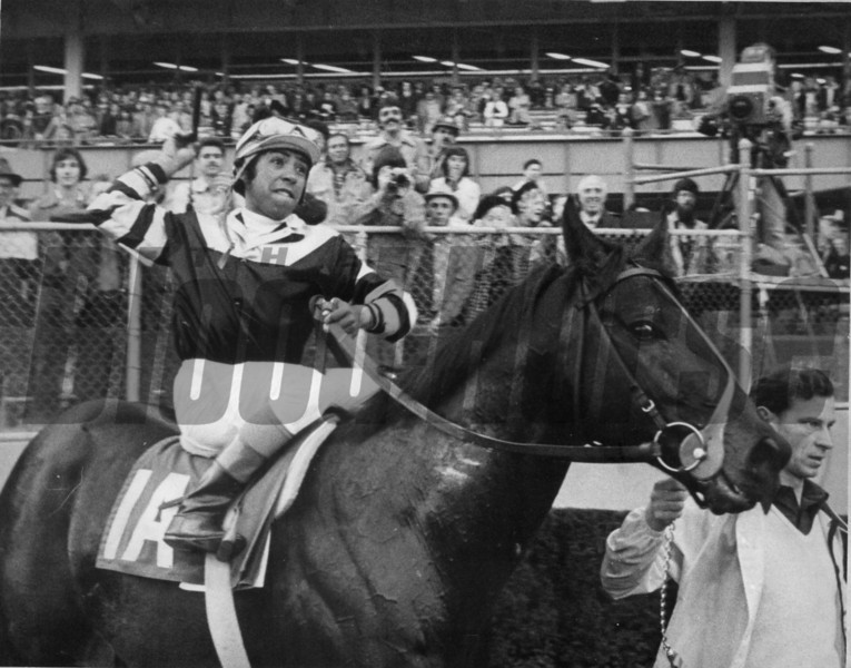 Seattle Slew wins the 1978 Stuyvesant Handicap<br /> Photo by: Bob Coglianese