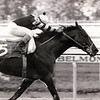 Seattle Slew wins the 1978 Woodward<br /> NYRA/Bob Coglianese Photo