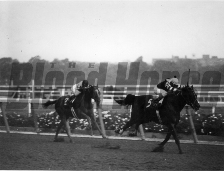 Seattle Slew and jockey Angel Cordero Jr. winning the 1978 Marlboro Cup.<br /> Photo by: Bob Coglianese