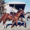 Secretariat at Belmont Park<br /> Photo by: Steve Haskin