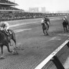 Secretariat wins the Bay Shore at Aqueduct.<br /> Coglianese Photos