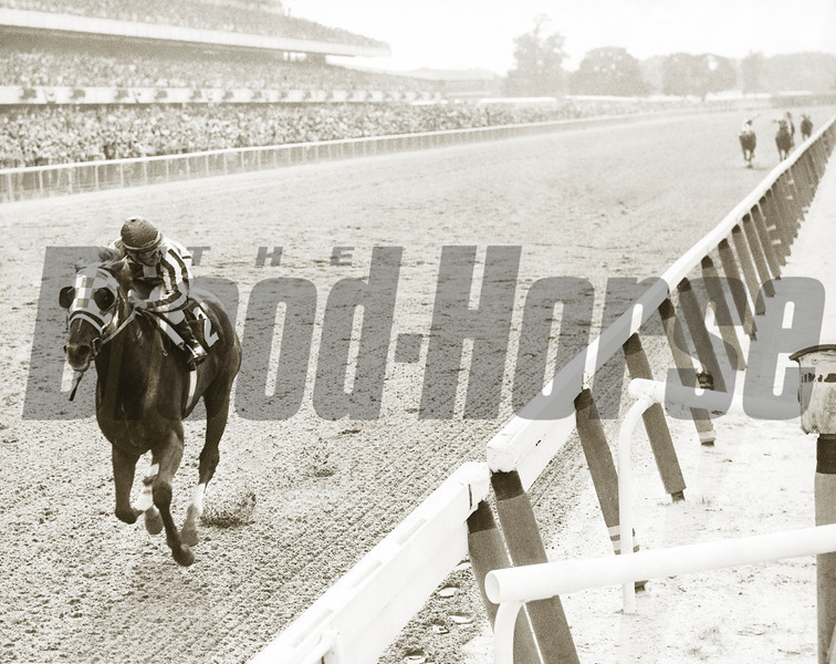 Secretariat winning the 1973 Belmont Stakes.<br /> Photo by: Bob Coglianese