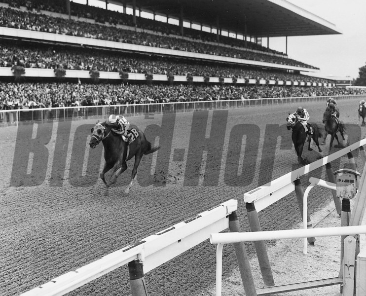 Secretariat wins the Marlboro Cup.<br /> Coglianese Photos