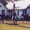 Secretariat with Riva Ridgle on walking ring.<br /> Photo by: Steve Haskin