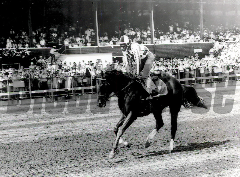 Secretariat with Charlie Davis at Saratoga jogs after race 4<br /> Travers Day, August 18, 1973<br /> Coglianese Photos