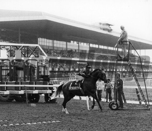 Spectacular Bid at the start of the Woodward Stakes on September 20, 1980
