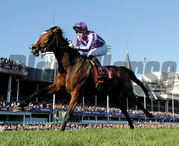 St. Nicholas Abby  wins the BC Turf  with jockey and trainer Aiden O'Brien's son Joseph O'Brien.   Photo by Skip Dickstein