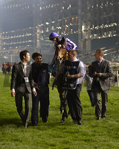 St Nicholas Abbey, Joseph Obrien up, wins the Dubai Sheema Classic  , Meydan, March 30th, 2013, Dubai World Cup Day Photo by Mathea Kelley