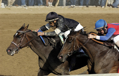 Keeneland racing on Oct. 5, 2003, near Lexington, Ky., including the Spinster Stakes (gr. I) and WinStar Galaxy (gr. II) Caption: Take Charge Lady with Edgar Prado up defeats You with Jerry Bailey to win the Spinster (gr. I). KeenelandRacingOrigs1 Image12 Photo by Anne M. Eberhardt