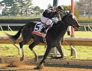 Take Charge Lady with D'Amico up wins the Ashland Stakes (gr. I) at Keeneland on April 6, 2002. KEEAshlandOrigs1 image 29 Photo by Anne M. Eberhardt