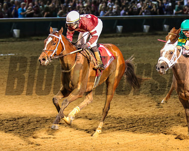 Untapable wins the Pocahontas Stakes (gr. 2) Jockey: Rosie Naprvnik CHURCHILL DOWNS, Louisville, KY Purse: $150,000 Date: September 7, 2013 Class: Grade II TV: HRTV Age: 2YO Fillies Race: 6 Distance: One Mile Post Time: 8:30 PM Photo by: Kevin Thompson