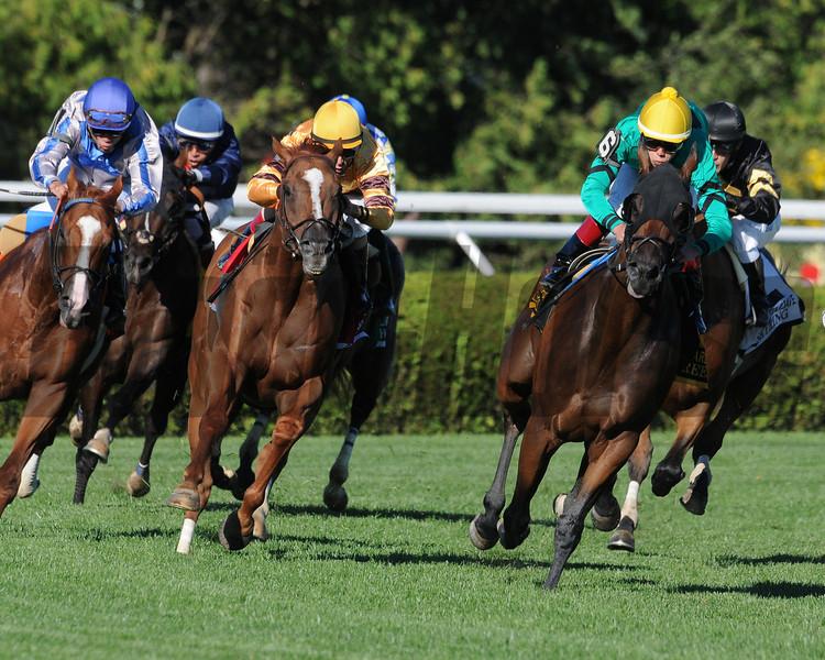 Wise Dan wins the Fourstardave Handicap (gr. 2)<br /> Jockey: John Velazquez<br /> SARATOGA, Saratoga Springs, NY<br /> Purse: $500,000<br /> Date: August 10, 2013<br /> Class: Grade 2<br /> TV: HRTV/TVG<br /> Age: 3 yo's & up<br /> Race: 10<br /> Distance: One Mile<br /> Post Time: 5:45 PM<br /> Photo by: Adam Coglianese/NYRA