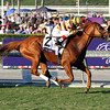 Wise Dan w/John Velazquez up wins the Breeders' Cup Mile at Santa Anita Park on November 3, 2012.<br /> Photo by Chad Harmon