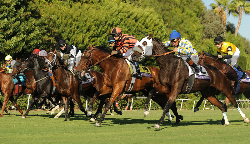 Horses break from the gate in the Breeders Cup Turf at Santa Anita. Photo by Wally Skalij