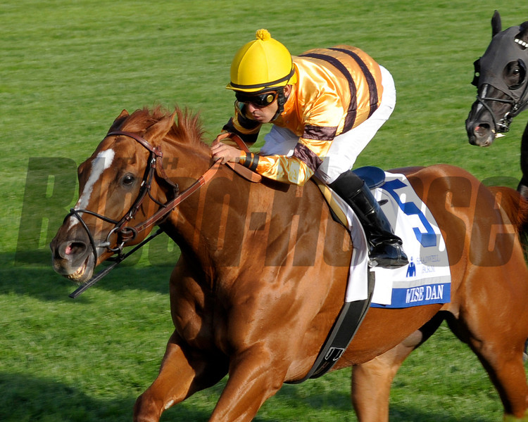 Caption: <br /> Wise Dan with Jose Lezcano up wins the Shadwell Turf Mile (gr. I) at Keeneland on Oct. 6, 2012.<br /> Keeneland<br /> ShadwellTurfMile1  image936<br /> Photo by Anne M. Eberhardt