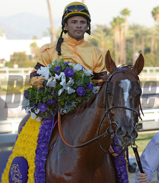 Wise Dan with jockey Jose Lezcano passes the competition to win the Breeders' Cup Mile for the second time in two years at Santa Anita Park in Arcadia, CA Nov. 1, 2013.  Photo by Skip Dickstein..