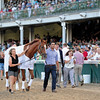 Wise Dan parading<br />  at Churchill Downs on June 18, 2016.