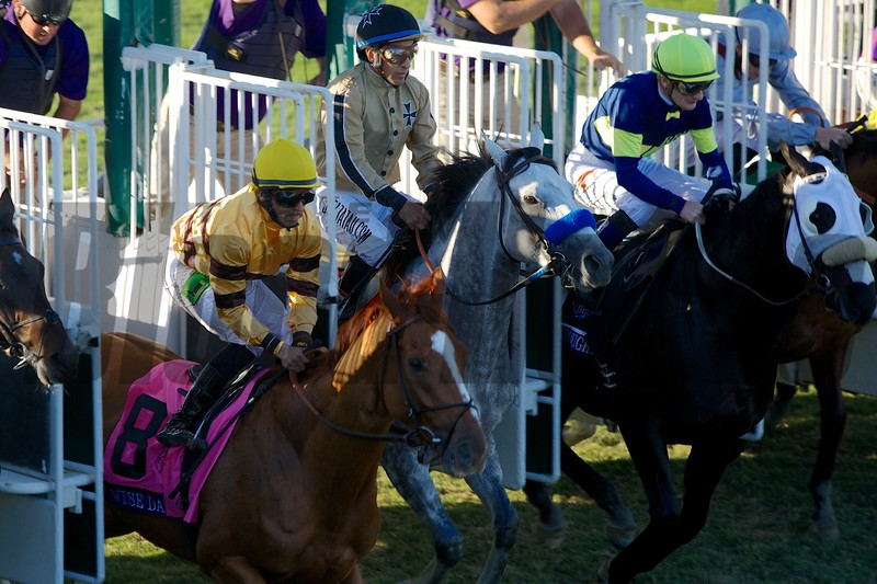 Wise Dan, Jose Lezcano up, broke from the gate in the Breeders' Cup Mile (G. I). Photo by Crawford Ifland.