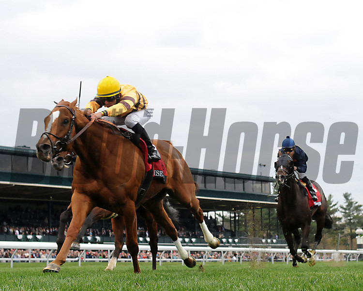 Wise Dan; Jose Lezcano up; wins the Markers Mark MIle<br /> photo by Mathea Kelley