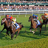 Caption: turf racing: first time by in the Shadwell Mile as a large crowd watches<br /> Wise Dan with Jose Lezcano up wins the Shadwell Turf Mile (gr. I) at Keeneland on Oct. 6, 2012.<br /> Keeneland<br /> ShadwellTurfMile1  image914<br /> Photo by Anne M. Eberhardt