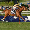 Caption: Wise Dan with John Velazquez wins the Mile.<br /> Breeders' Cup races at Santa Anita near Arcadia, California, on Nov. 3, 2012.<br /> BCRACES2012       Mile  image457<br /> Photo by Anne M. Eberhardt