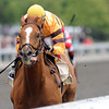 Wise Dan, John Velazquez up, wins the Ben Ali Stakes. Keeneland Race Course; Lexington; KY 4/22/12 photo by Mathea Kelley<br /> Photo by Mathea Kelley