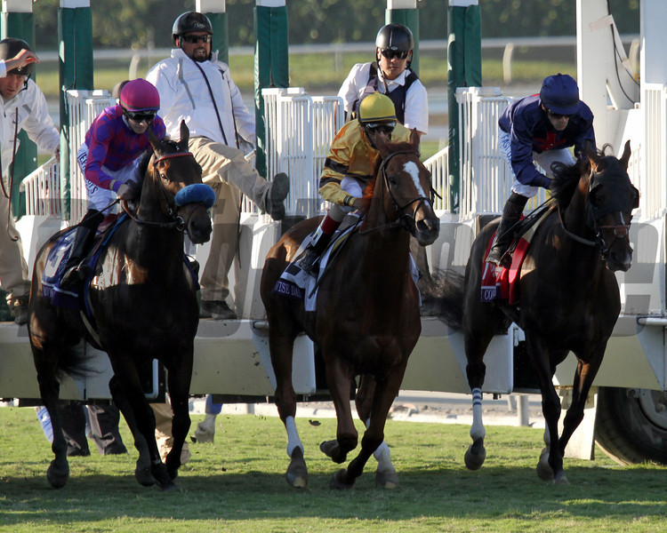 Wise Dan w/John Velazquez up leaves the starting gate for the Breeders' Cup Mile at Santa Anita Park on November 3, 2012.<br /> Photo by Chad Harmon
