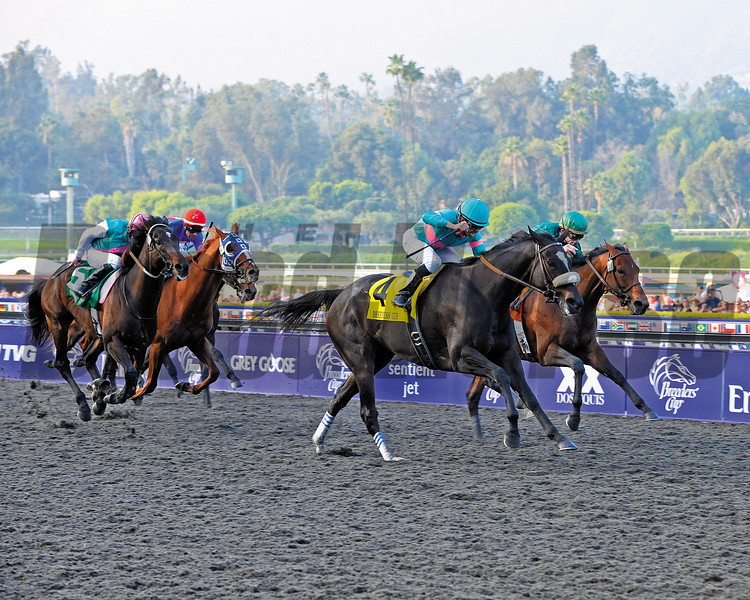 Zenyatta with Mike Smith wins the Breeders' Cup Classic, owners Ann and Jerry Moss, trainer John Shirreffs and wife Dottie Ingordo-Shirreffs.<br /> Breeders' Cup Saturda at Oak Tree/Santa Anita on Nov. 7, 2009, in Pasadena, California.<br /> PHoto by Anne M. Eberhardt