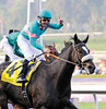 Jockey Mike Smith rides Zenyatta (l)  past  a field of males to win the Breeders' Cup Classic at Santa Anita Race Track in Arcadia, California November 6, 2009.    <br /> Photo by: Skip Dickstein
