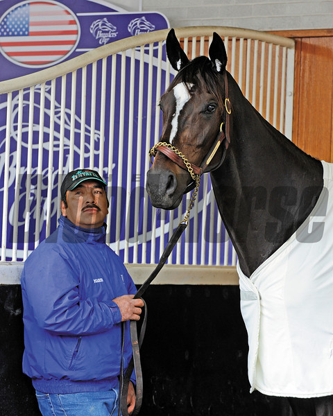 Mario Espinosa with Zenyatta<br /> Breeders' Cup horses work at Churchill Downs on Nov.4, 2010, in Lexington, KY.<br /> Photo by Anne M. Eberhardt