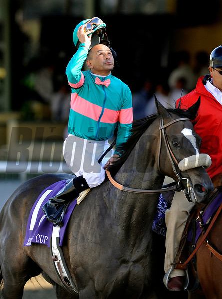 Jockey Mike Smith celebrates aboard Zenyatta after winning the Breeders Cup Ladies CLassic at Santa Anita.