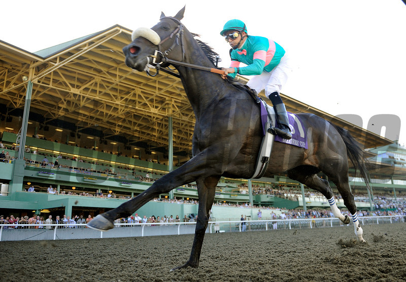 Jockey Mike Smith and Zenyata trails the field into the first turn in the Breeders Cup Ladies Classic at Santa Anita.