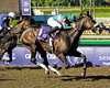 Caption: <br /> Zenyatta with Mike Smith wins the Breeders' Cup Ladies Classic (gr. I)  on October 24, 2008, at Santa Anita in Arcadia, California. Cocoa Beach second.<br /> Race7LadiesClassic  image535<br /> Poto by Anne M. Eberhardt