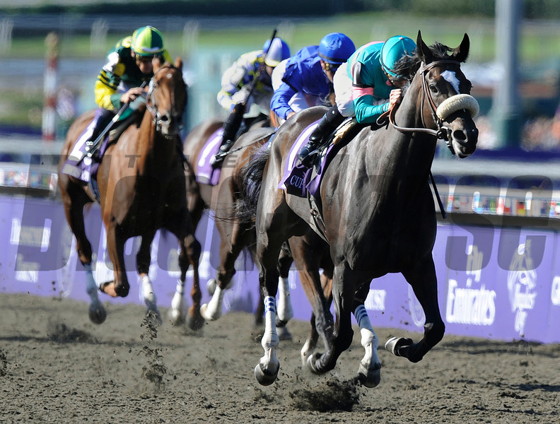 Jockey Mike Smith guides Zenyatta to victory in the Breeders Cup Ladies CLassic at Santa Anita.<br /> Wally Skalij