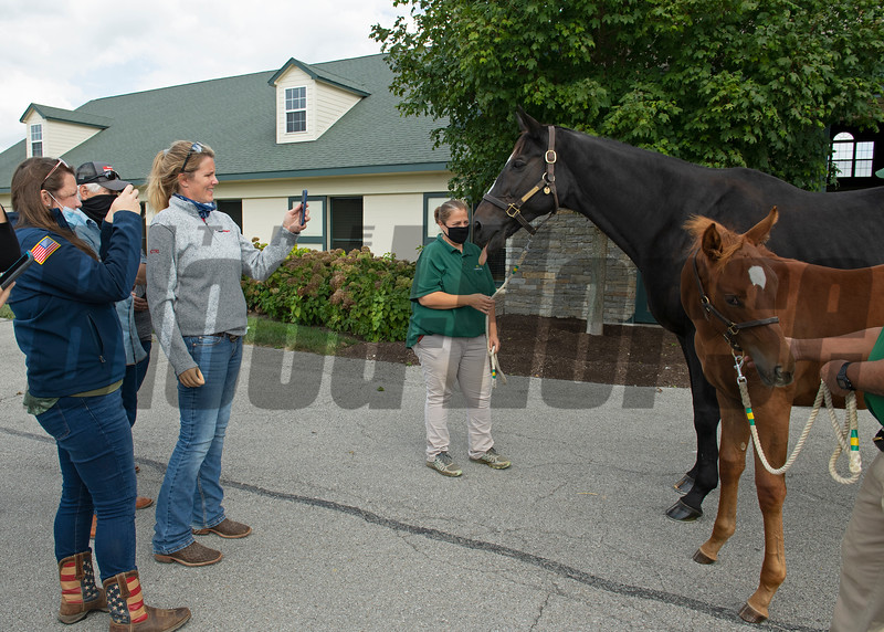 Zenyatta and 2020 foal with Team BraveHearts at Lane's End Farm in Versailles, KY on September 24, 2020.